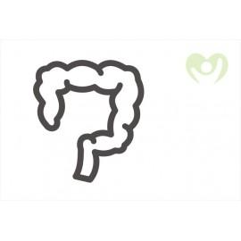 Gastrointestinální (trávicí) potíže